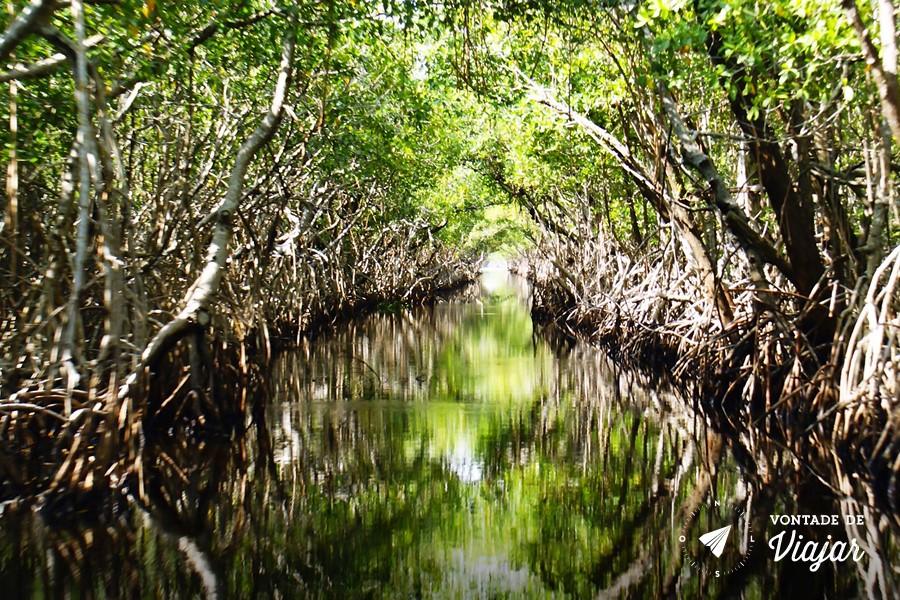 parque nacional everglades fica - photo #10